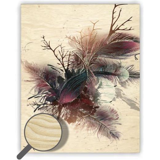 Dřevěný obraz  Feathers