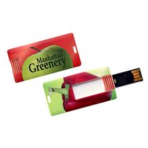 USB stick Mini Card