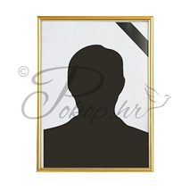 Picture frame PVC 18x24 gold